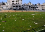 Football in Gaza offers a release from tough Gazan life (Facekoora)