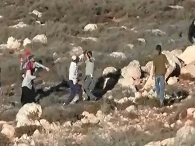 Israeli Settlers Attack Palestinians During Olive Harvest in