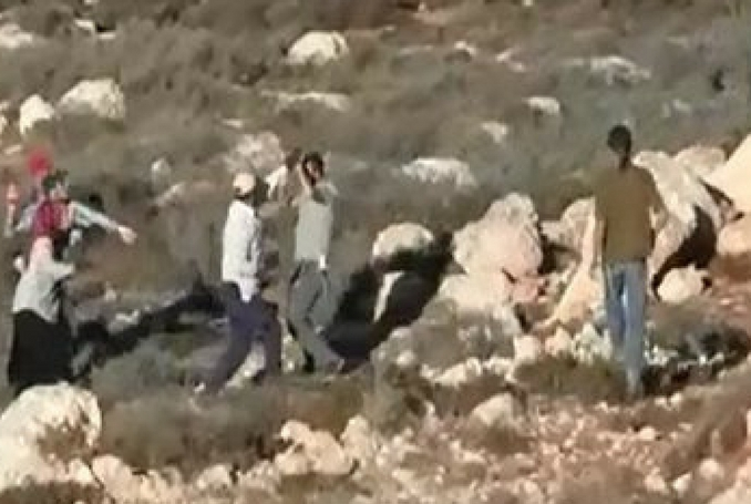 Palestinian shot dead during clashes with Israelis in the Nablus area