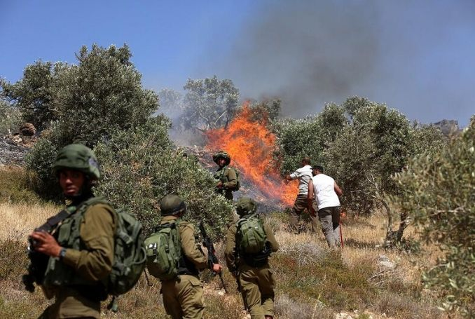 Jewish Settlers Set Fire to Palestinian Fields near Nablus